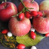 Jesień daje nam warzywa i owoce - scenariusz zajęć otwartych dla rodziców