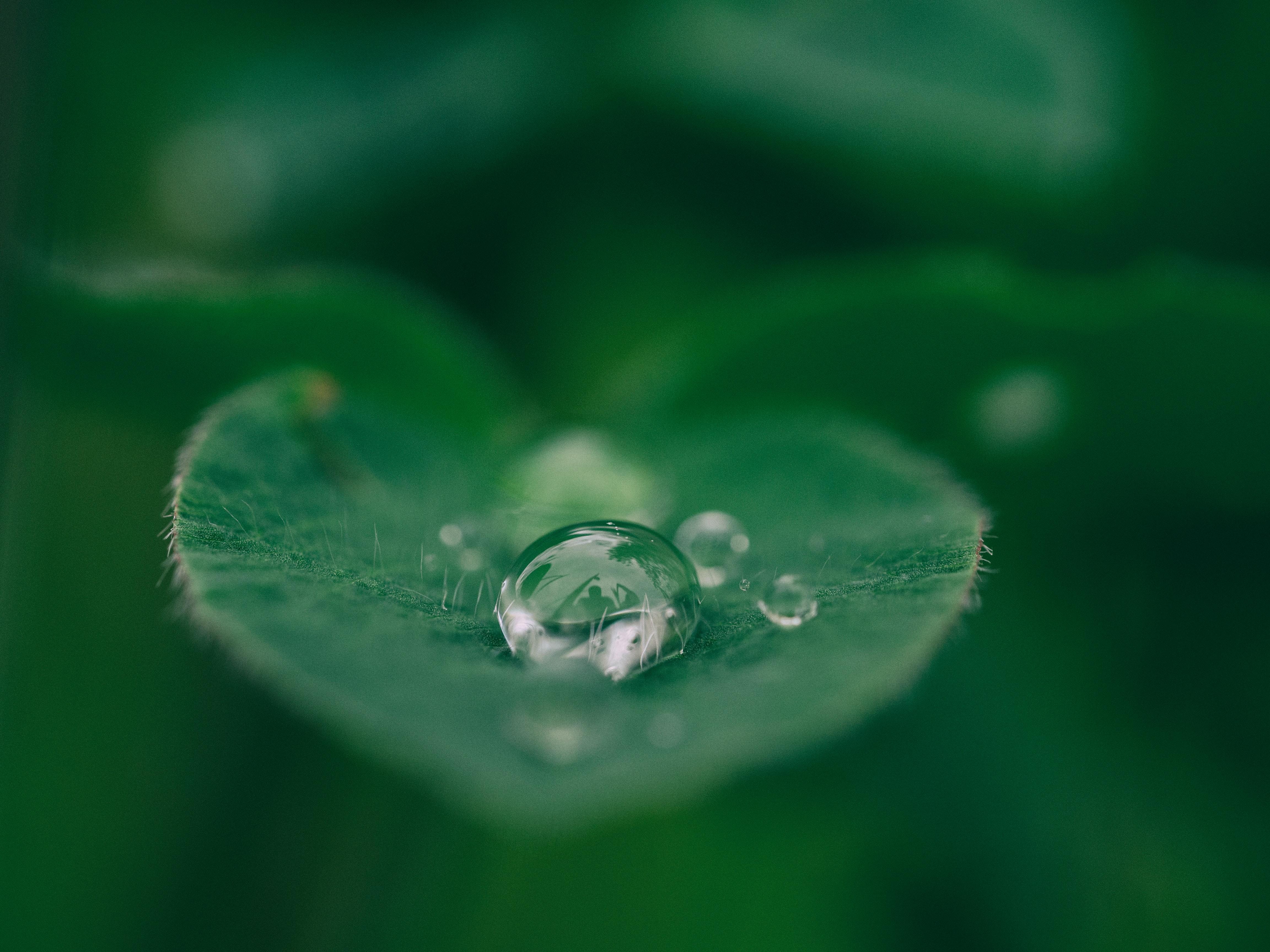 Wędrówki kropli wody – scenariusze zajęć na Dzień Wody