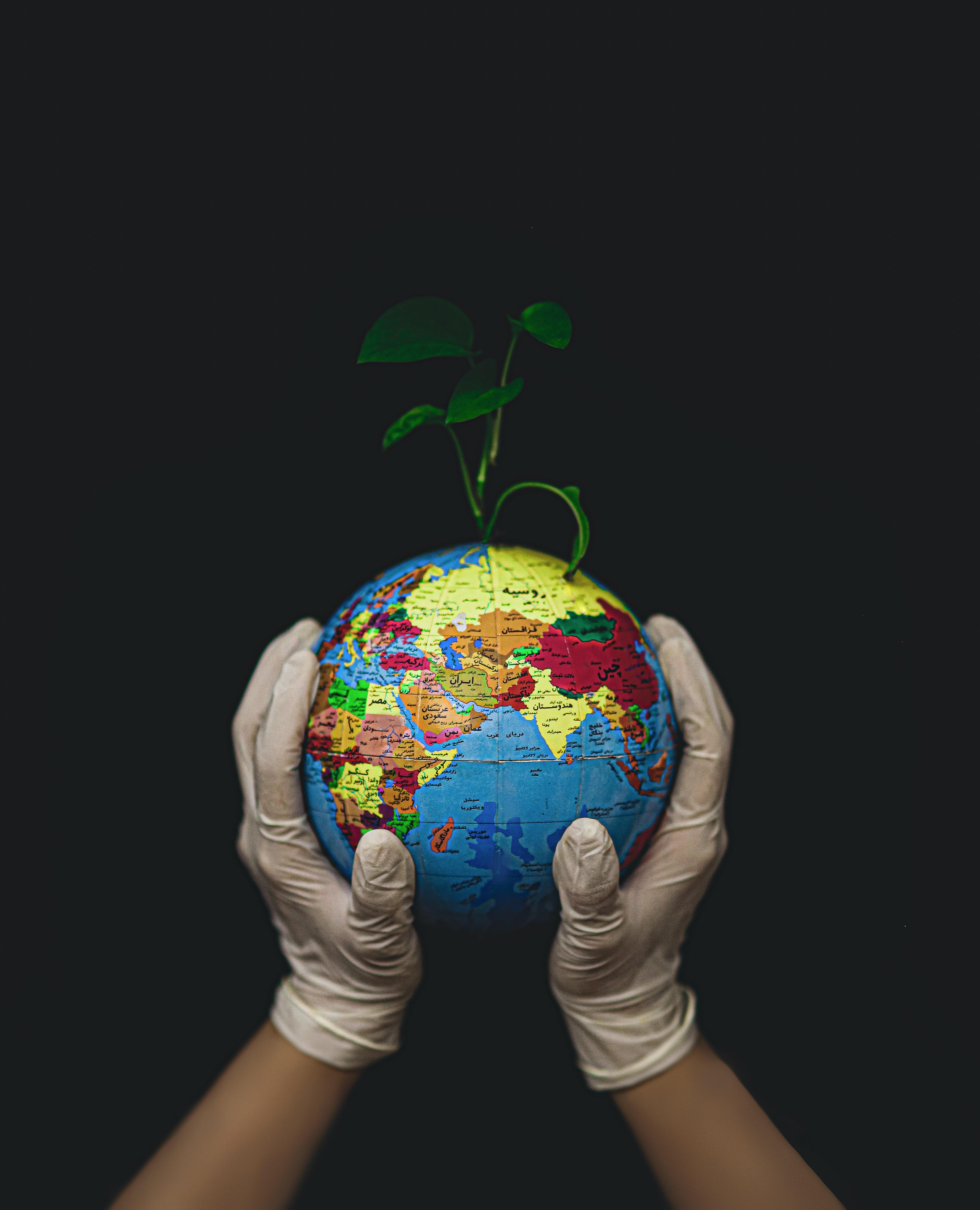 Głodne pisklęta – scenariusze zajęć na Dzień Ziemi