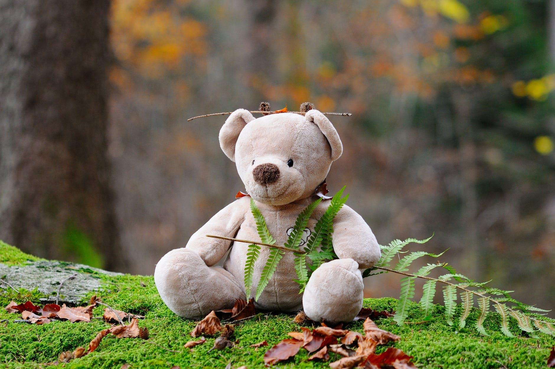 Niedźwiedź śpi – zabawy rozwijające, niepełnosprawność intelektualna