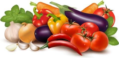 Rozpoznajemy i liczymy warzywa – scenariusze edukacyjno-terapeutyczne